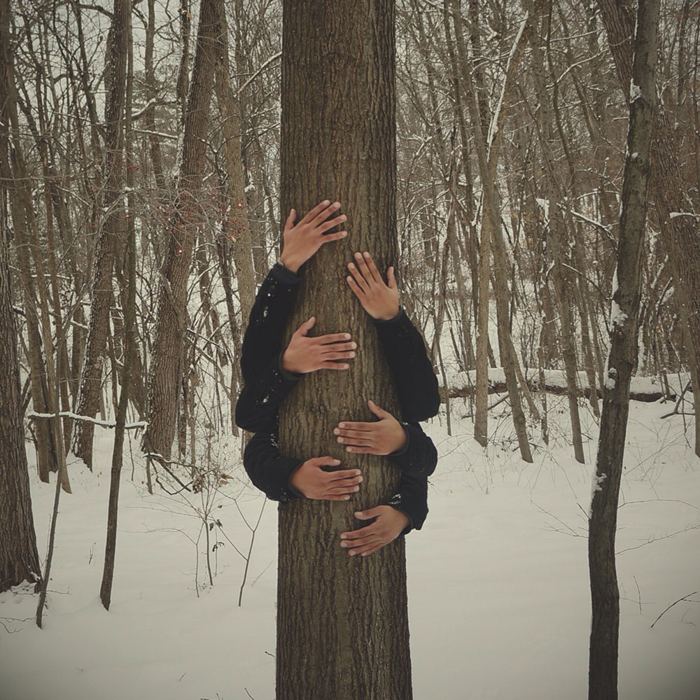 hands on tree concept in winter, tree hugger
