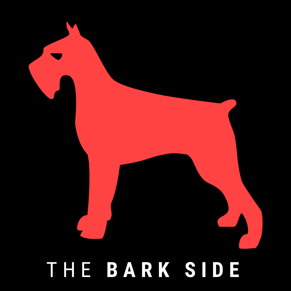 red starwars inspired dog logo